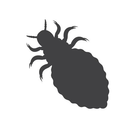 Lice Insect Silhouette