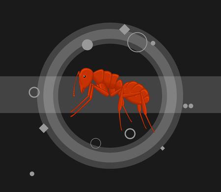 crawly: Red Ant Vector Illustration Illustration