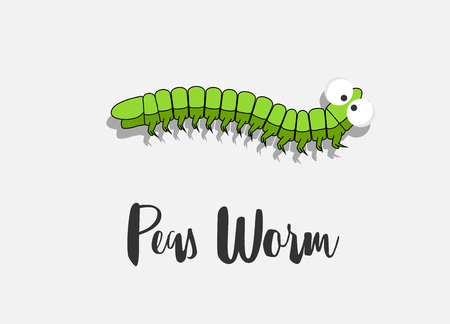 Comic Pea Worm Illustration