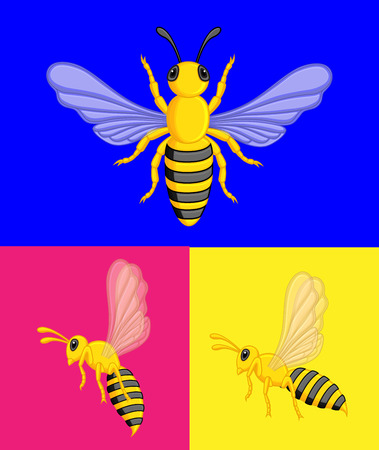 wasps: Wasps Vector