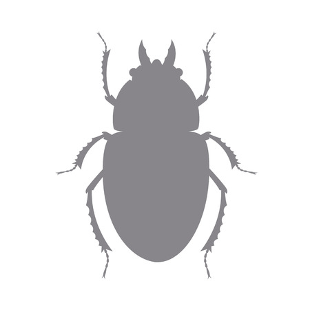 bloodsucker: Shape of Scarab Beetle Illustration