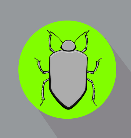 Grey Beetle Insect Vector