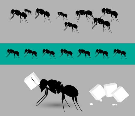 diligente: Las hormigas diligentes vectorial Equipo