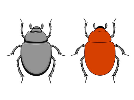 termite: Comic Scarab Beetle Insects