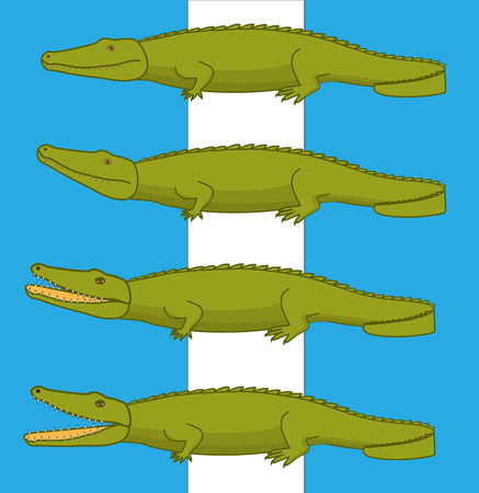 caiman: Wild Crocodiles Illustration