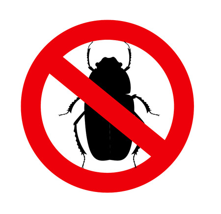 Kill Beetle Insects Vector Sign