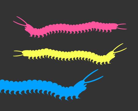 gusanos: Los gusanos milpi�s coloridos Vectores