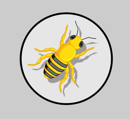 crawling creature: Wasp Vector