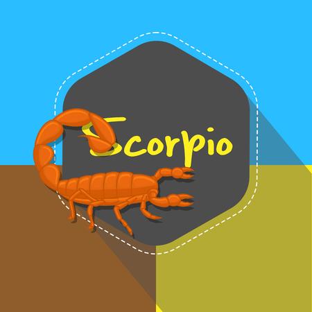 scorpion: Hottentotta Tamulus Scorpion