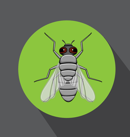 Retro Fly Insect