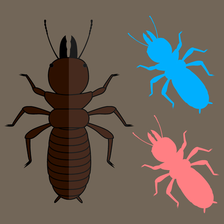 termite: Termite Insects Vector