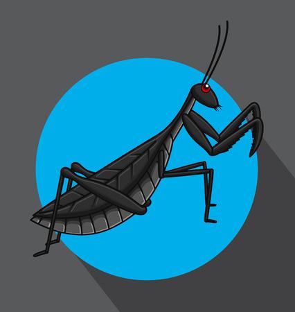 Creepy Mantid Insect Vector