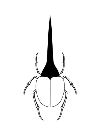 parasite: Drawing Art of Hercules Beetle Insect