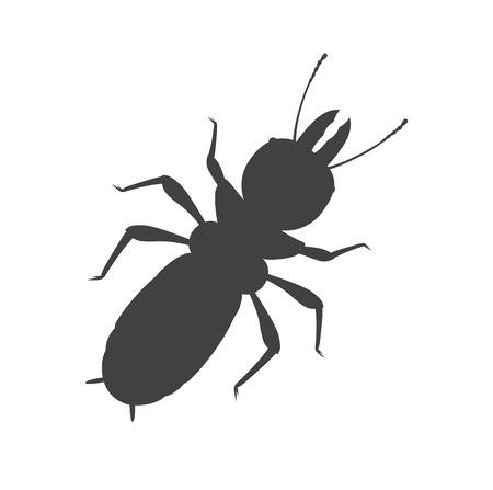 termite: Termite Insect Silhouette Vector