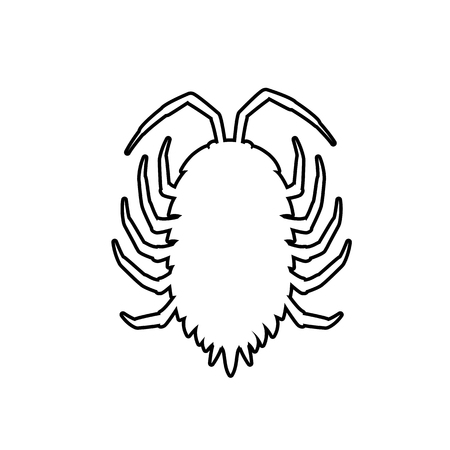 lice: Drawing Art of Lice Insect