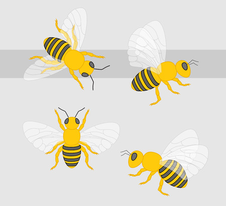 crawling creature: Bees Vector