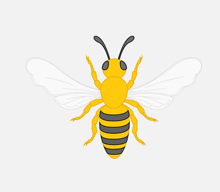 crawling creature: Bee