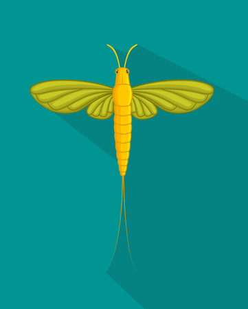 crawly: Dragonfly Insect Vector