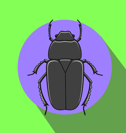 crawly: Weird Creepy Beetle Insect