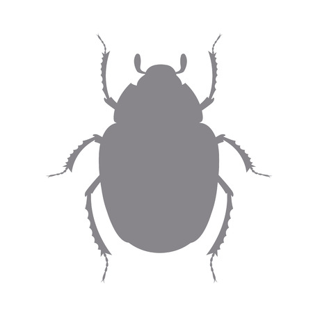 Scarab Silhouette