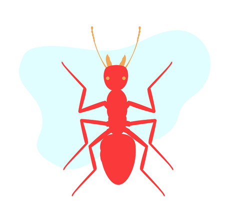 Army Ant Illustration