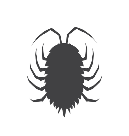 crawly: Woodlouse Insect Vector Silhouette Illustration