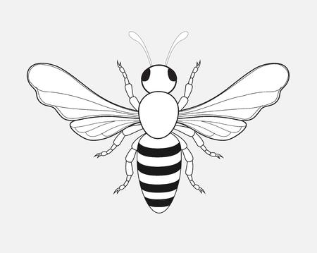 hum: Bumblebee Drawing