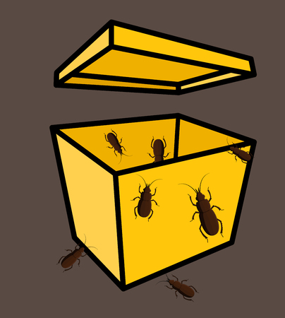 arthropoda: Insects in Packet Vector