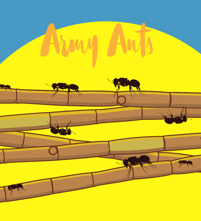sugarcane: Ants on Sugarcane Sticks Illustration