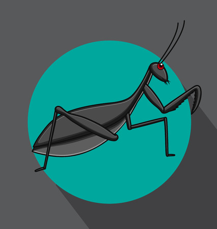 crawly: Mantid Cartoon Insect