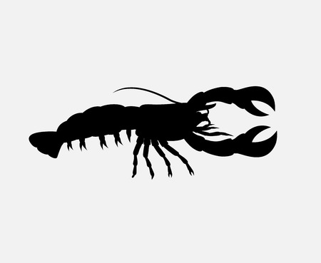 scorpion fish: Crayfish Silhouette