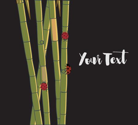 sugarcane: Ladybugs on Sugarcane Sticks