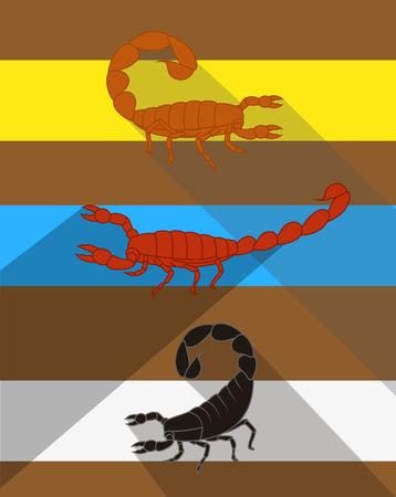 poisonous substances: Scorpions Vector Illustration