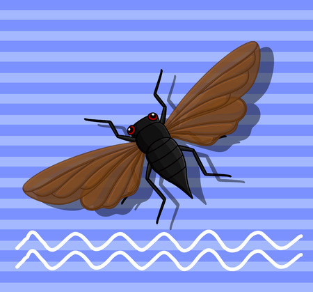 Cicada Insect Flying Illustration