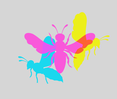 crawling creature: Colorful Wasp Insects Illustration