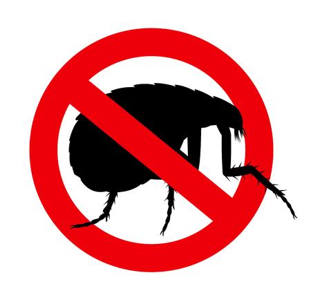 forbidden: Forbidden Floh Insect Illustration