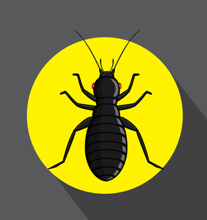 Black Louse Insect Illustration