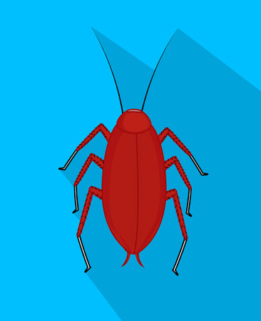 cockroach: Red Cockroach