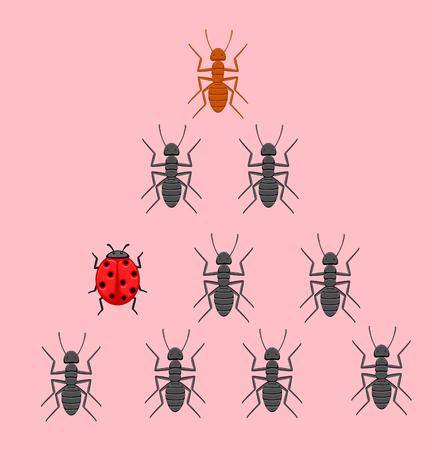 diligente: Mariquita en equipo hormigas
