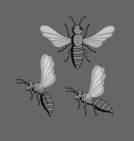 crawling creature: Wasp Insects Illustration