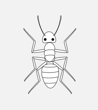 Ant Drawing