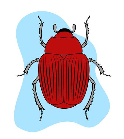 Red Creepy Beetle Illustration