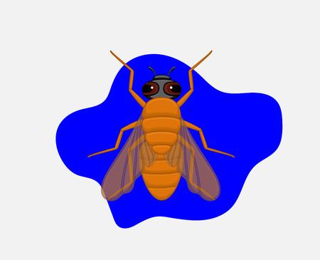 crawling creature: Cartoon Fly