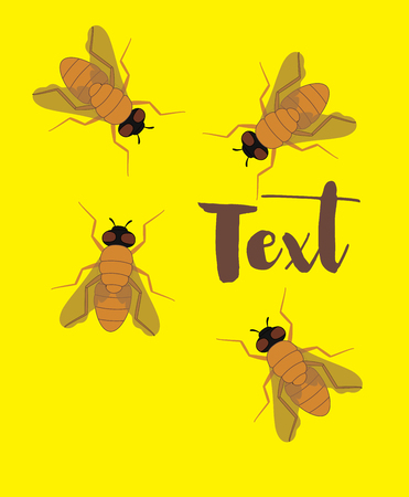 Flies Background