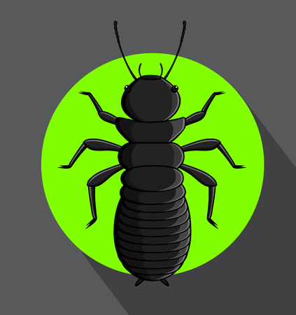 termite: Creepy Termite Vector Illustration