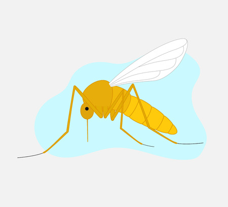hum: Mosquito
