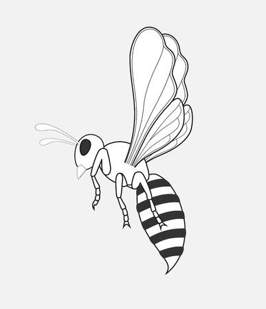 hum: Wasp Drawing Illustration
