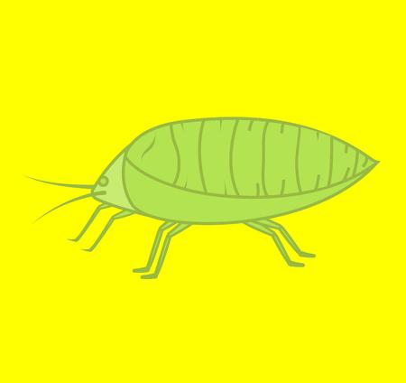 piojos: Los piojos del vector de insectos planta