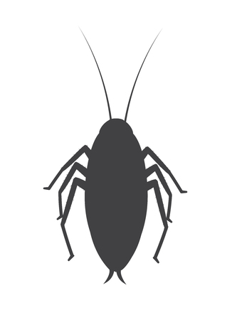 arthropoda: Cockroach Insect Silhouette