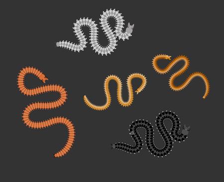 gusanos: ciempi�s Worms